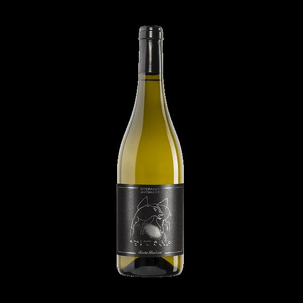 Der Animale Celeste ist ein sortenreiner Sauvignon blanc.